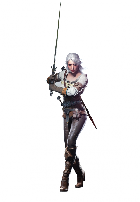 Witcher PNG Image