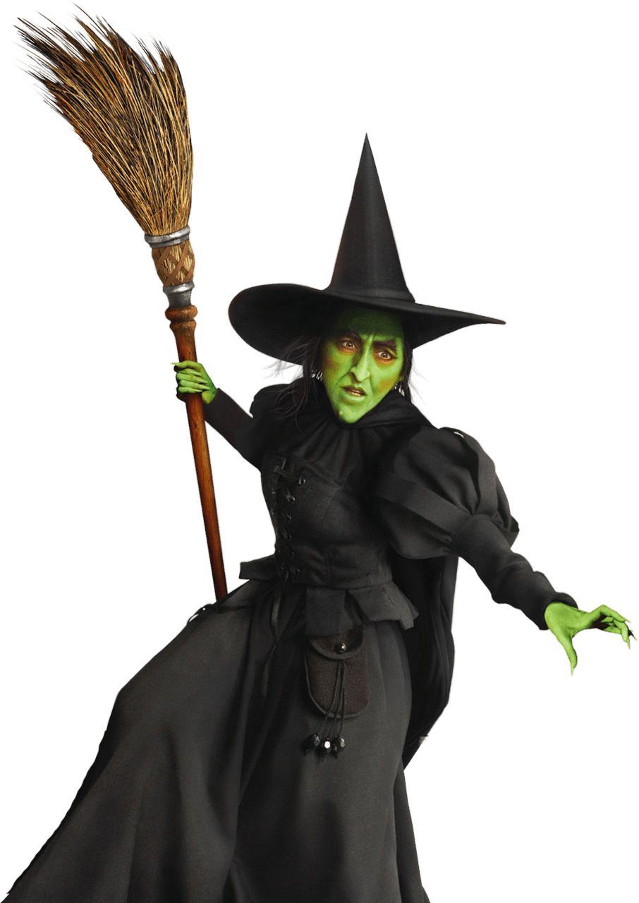 Image result for witch halloween costume cc0