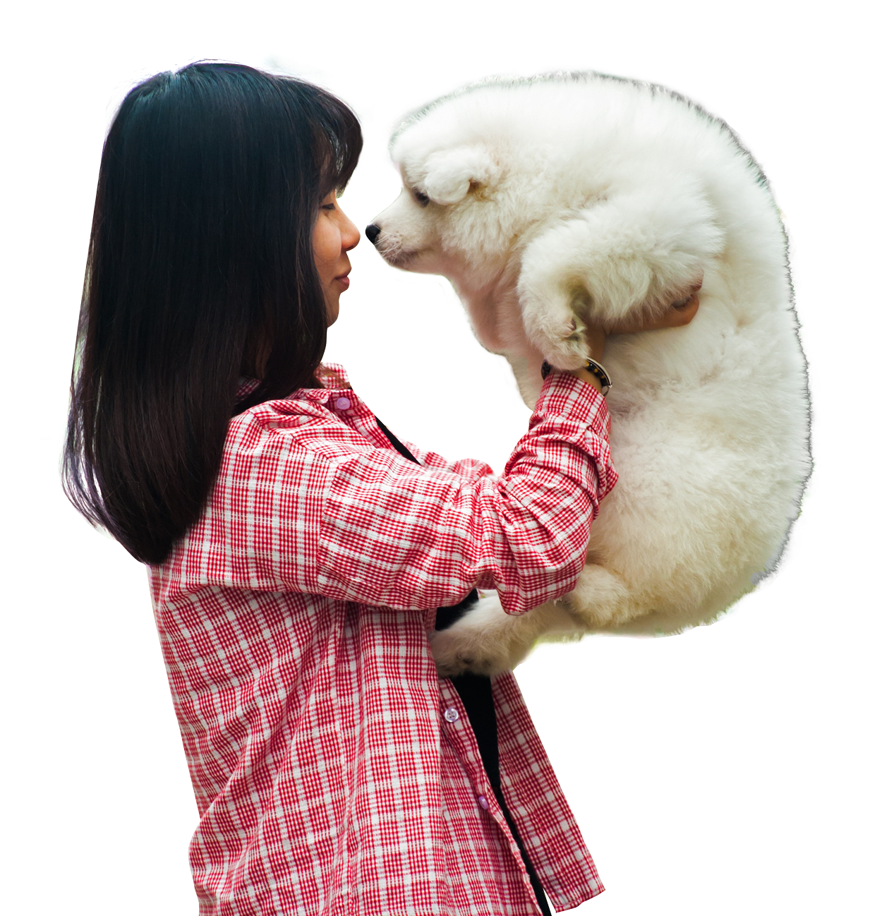 Woman Playing With A Puppy Dog PNG Image