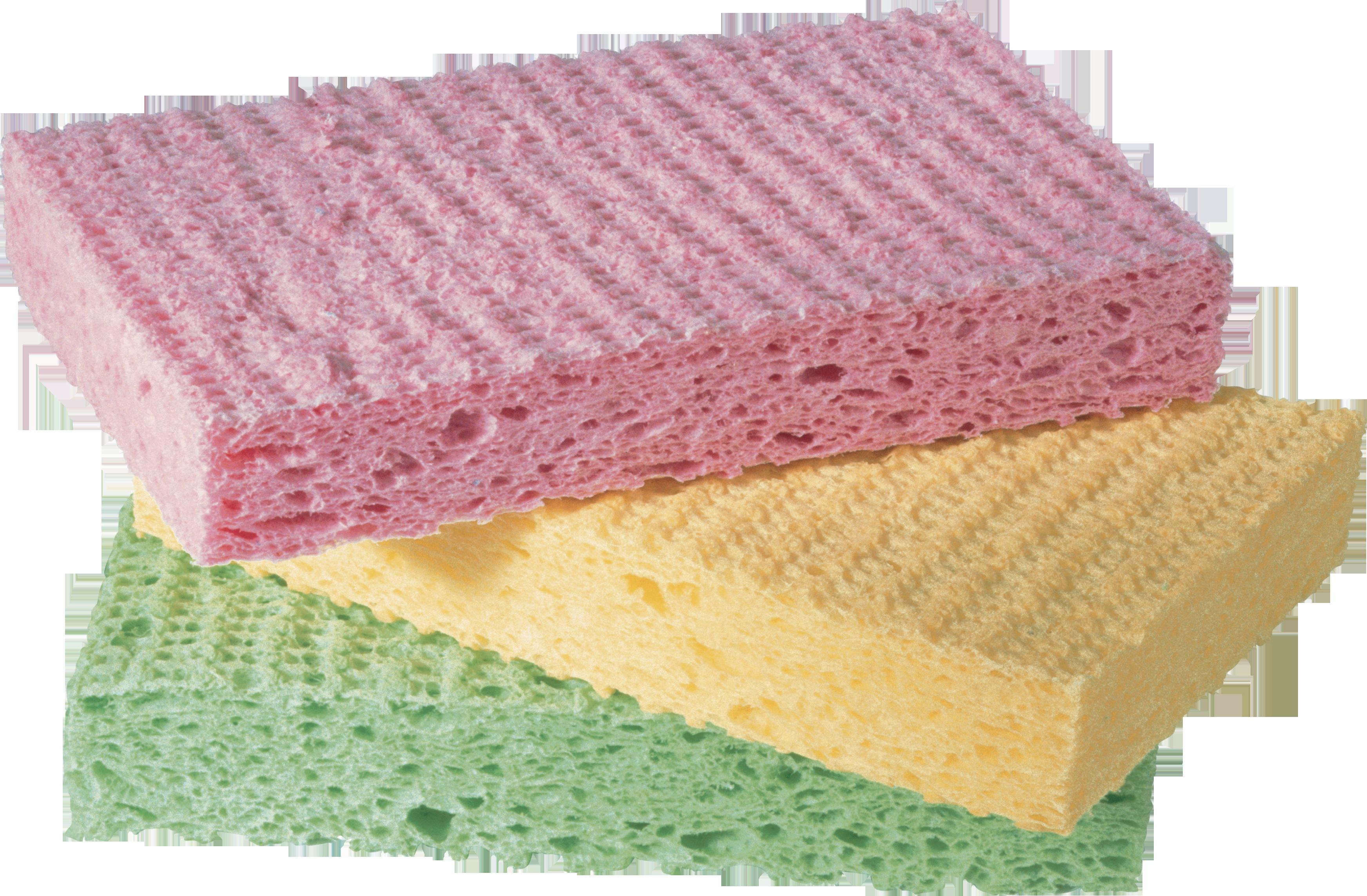 Sponge PNG Image