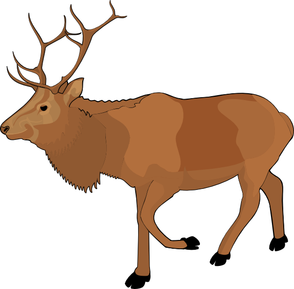 Standing Moose Clipart