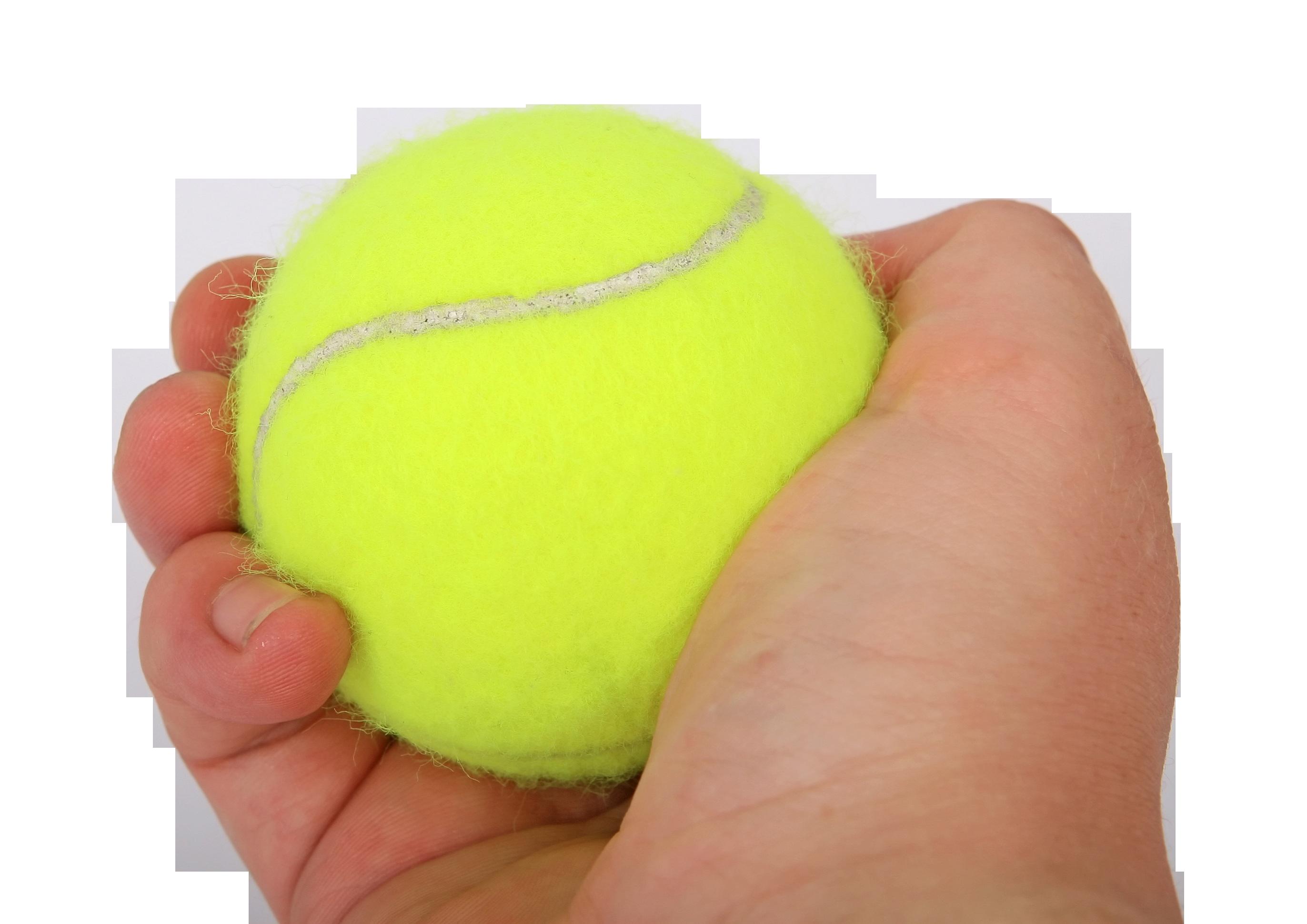 Tennis Ball in Hand