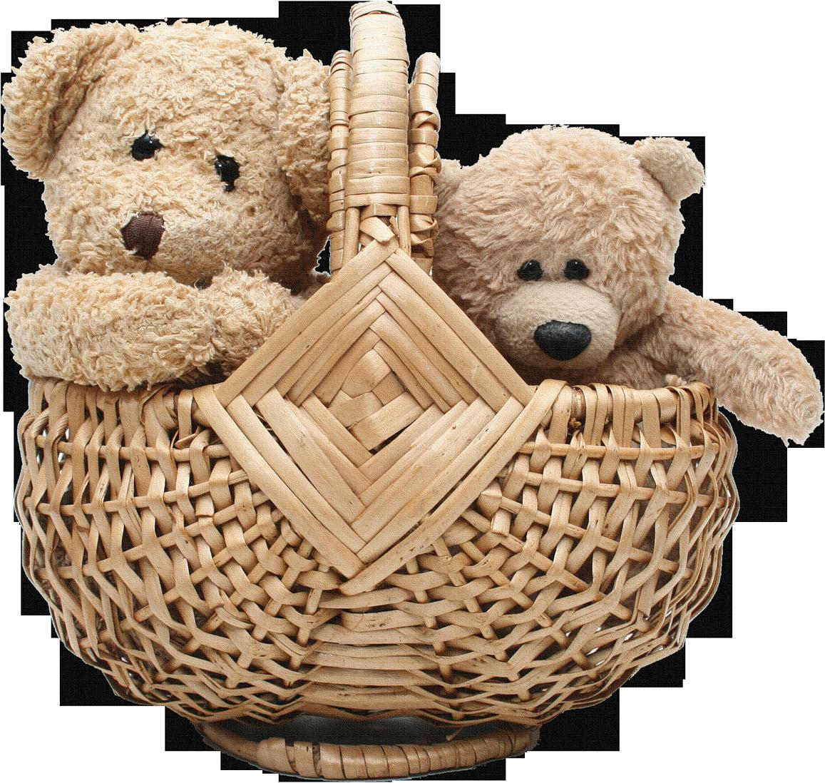 Two Teddy Bear In Basket