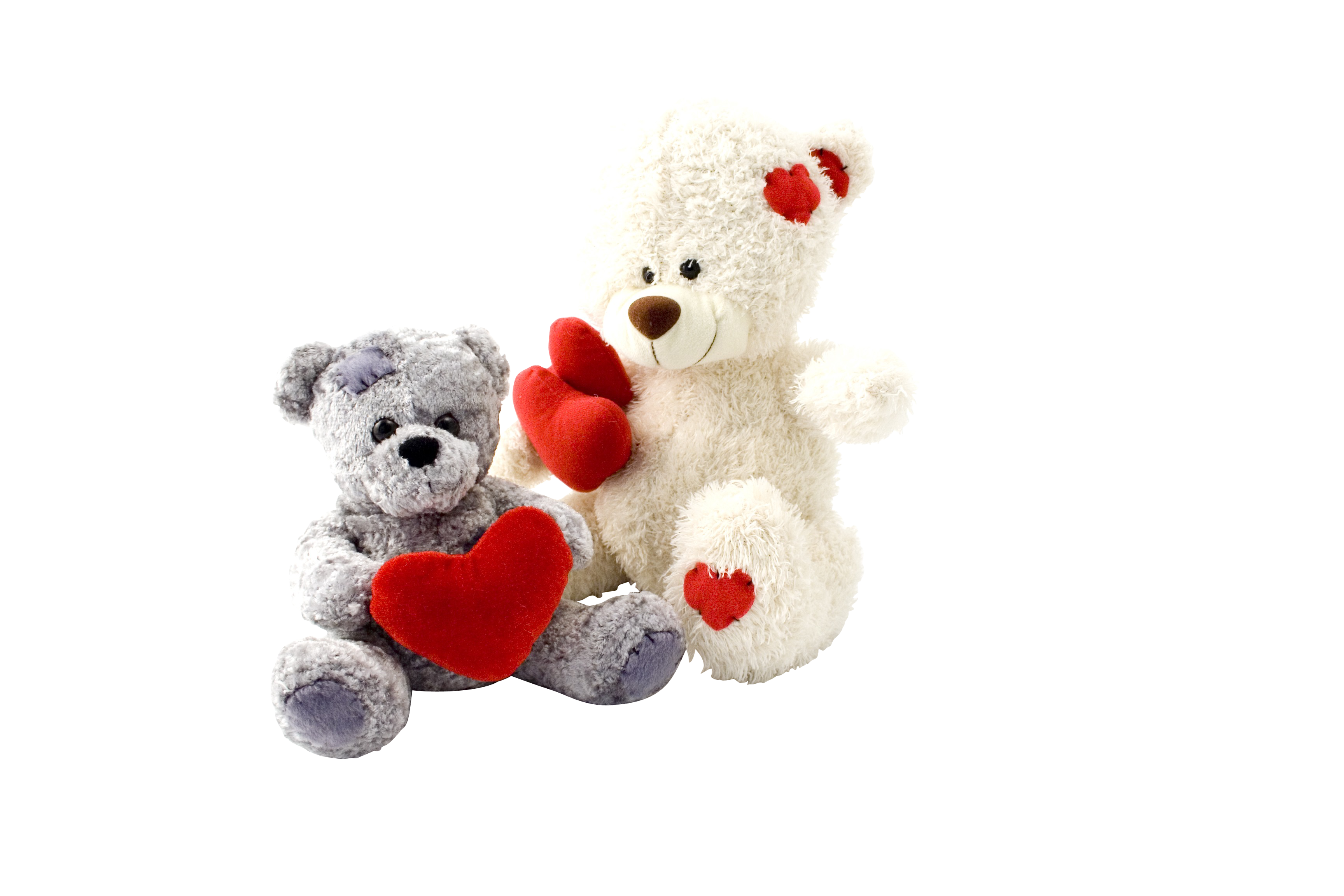 Two Teddy Bears gift PNG Image