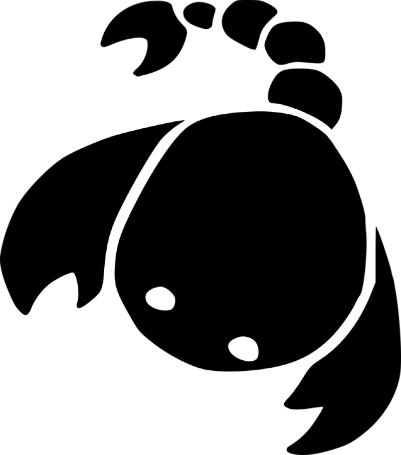 Baby Scorpio Drawing PNG Image