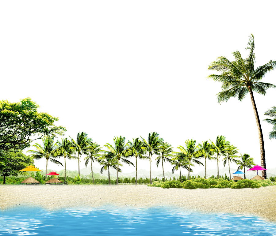 Beach with Coconut Palms and Summer Huts PNG Image