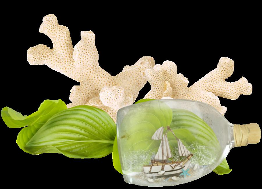 Aquarium Decor with Bottle Ship PNG Image