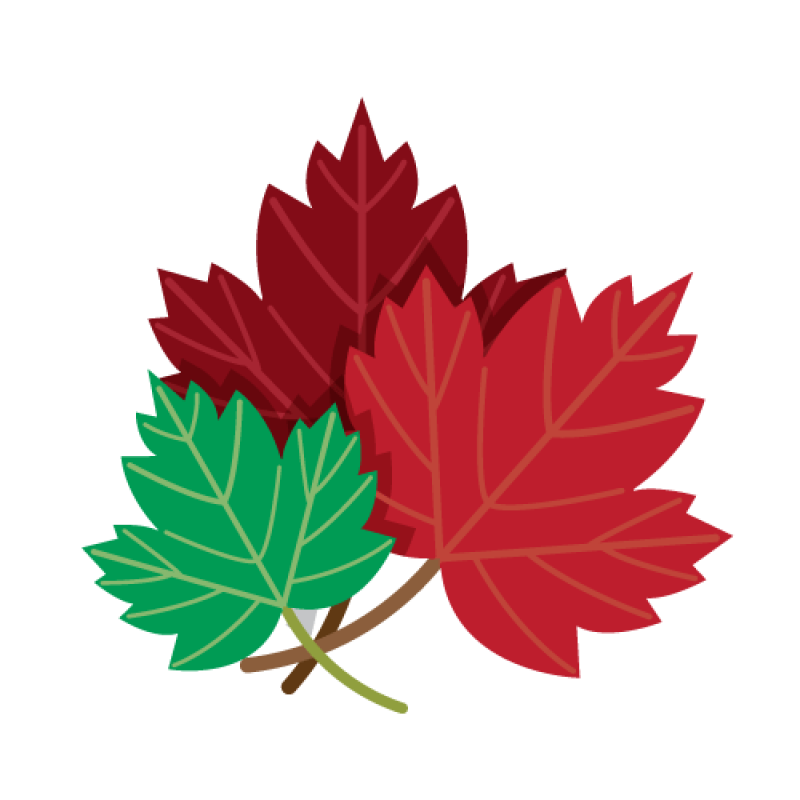 Transparent Canada Maple Leaf Clipart Red Maple Leaf Clip