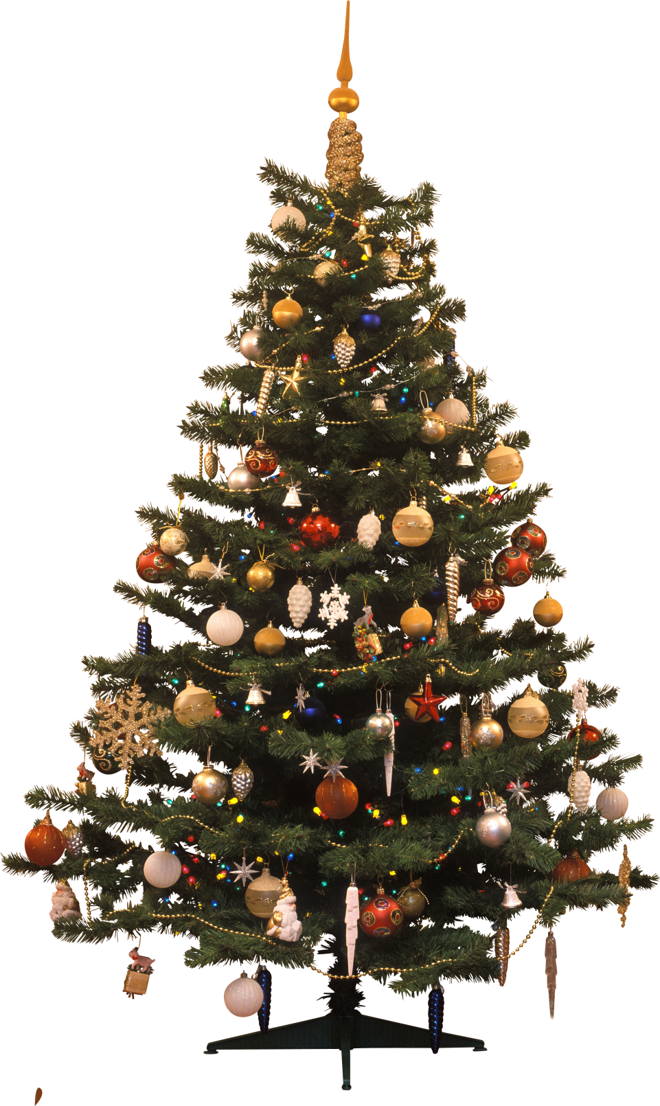 Christmas Tree Traditional  PNG Image