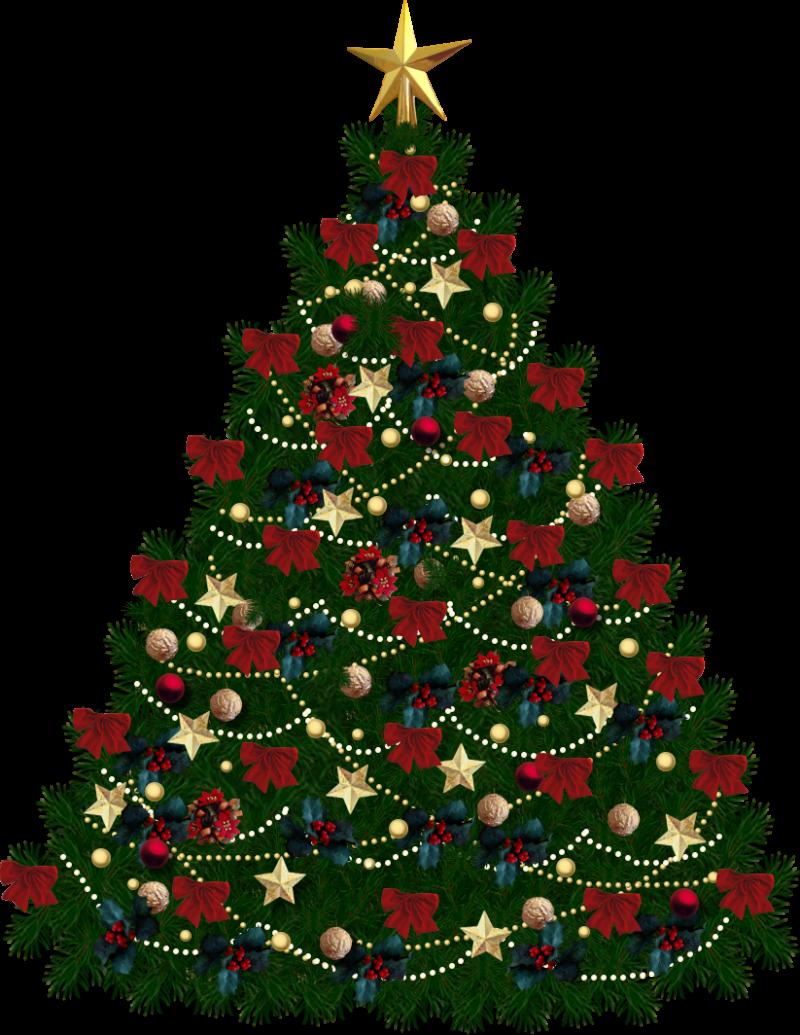 Christmas Tree Festive PNG Image