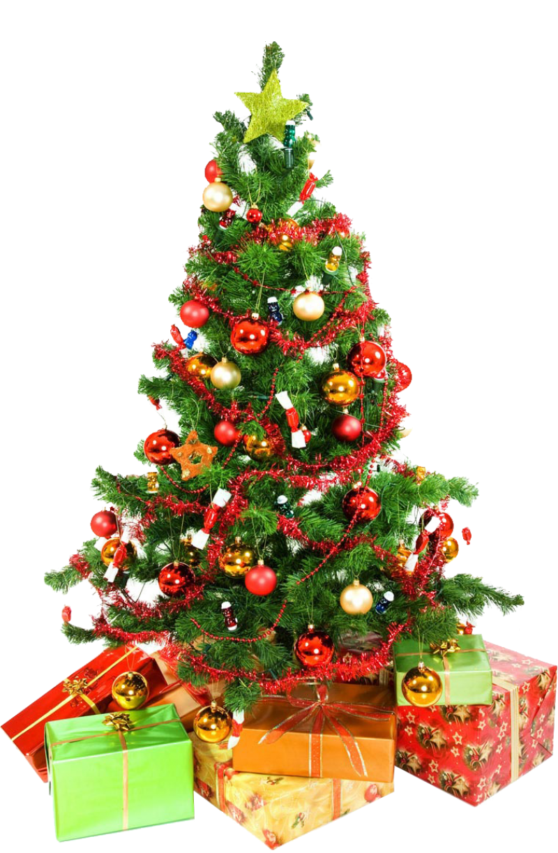 Christmas Tree Presents Underneath PNG Image