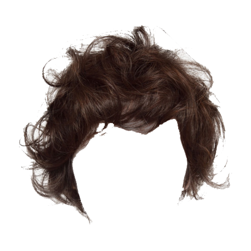 Hair Png Image Purepng Free Transparent Cc0 Png Image Library