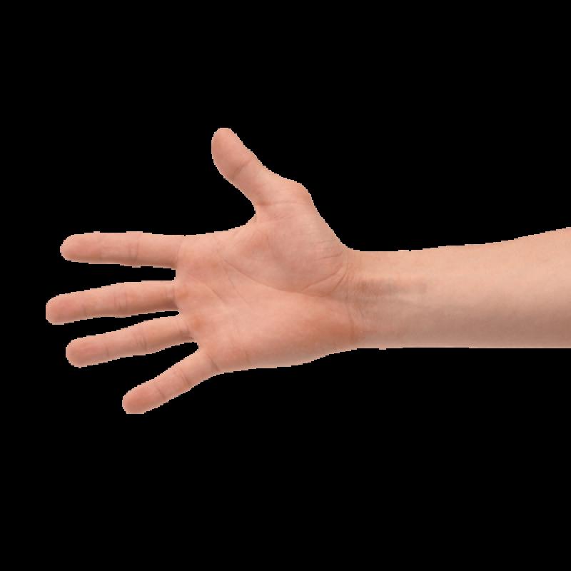Hand Shake PNG Image