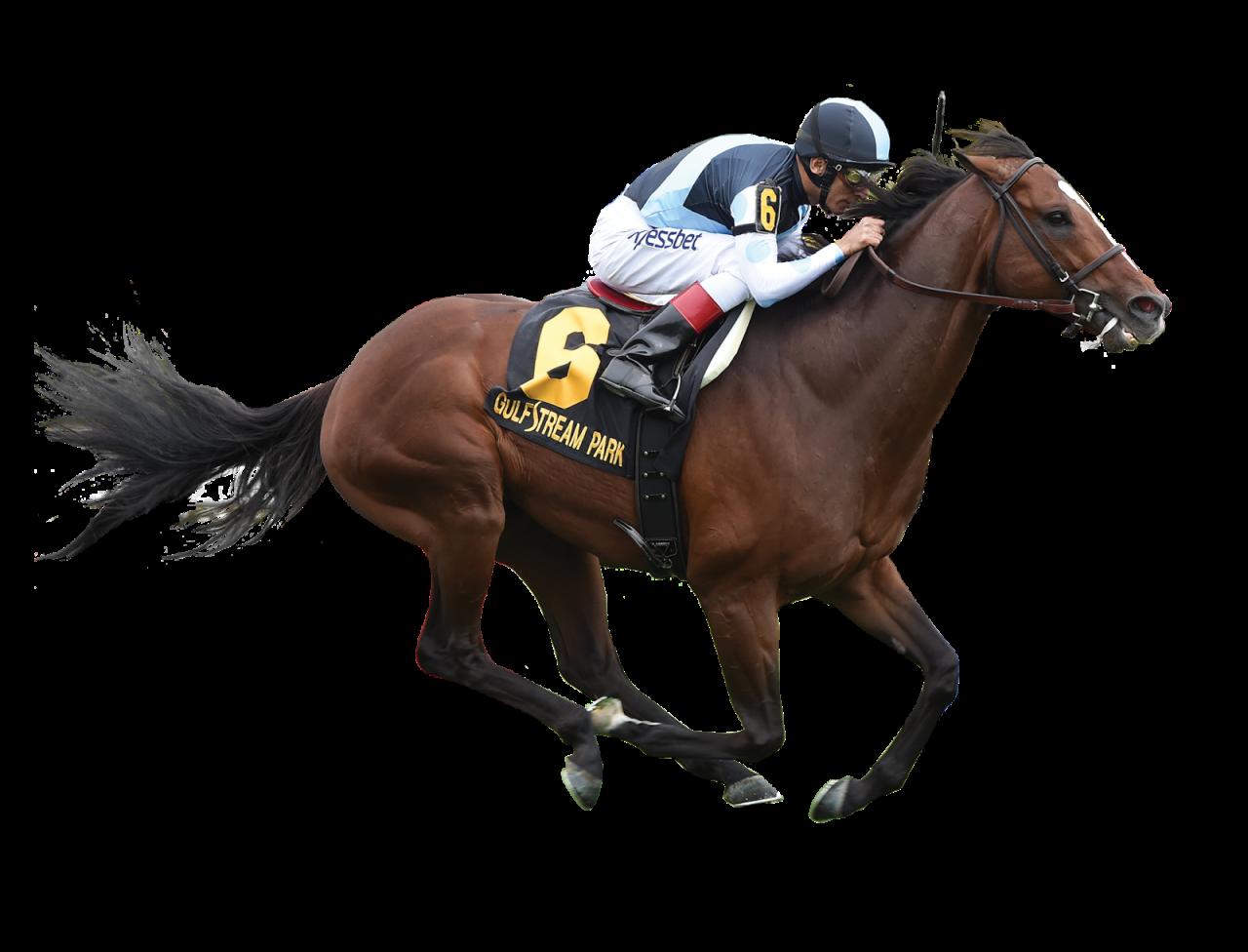 Horse Jockey PNG Image