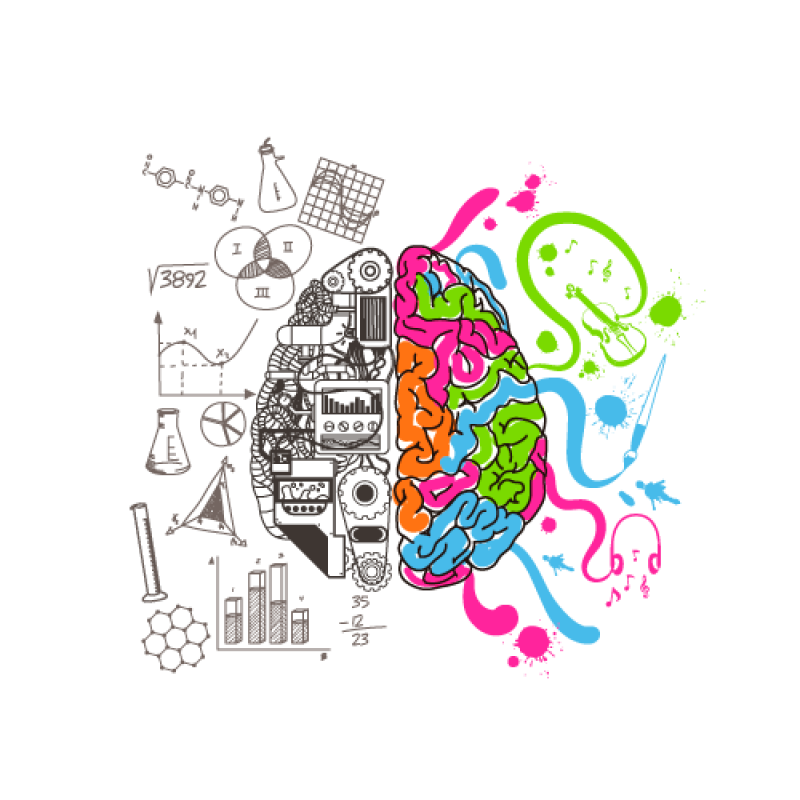 Intelligent Brain PNG Image