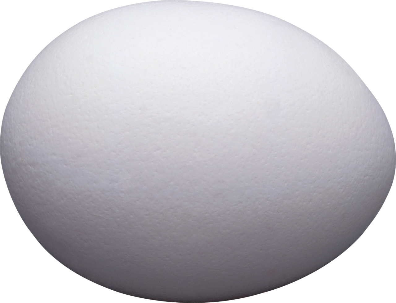 One White Egg PNG Image