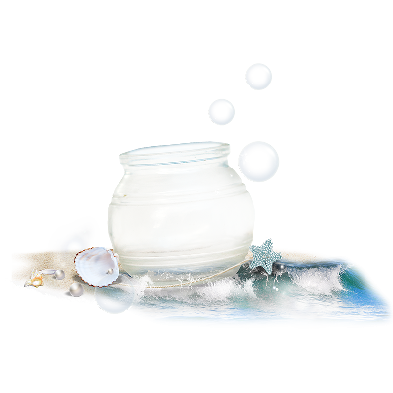 Crystal Pot with Sea Shells PNG Image