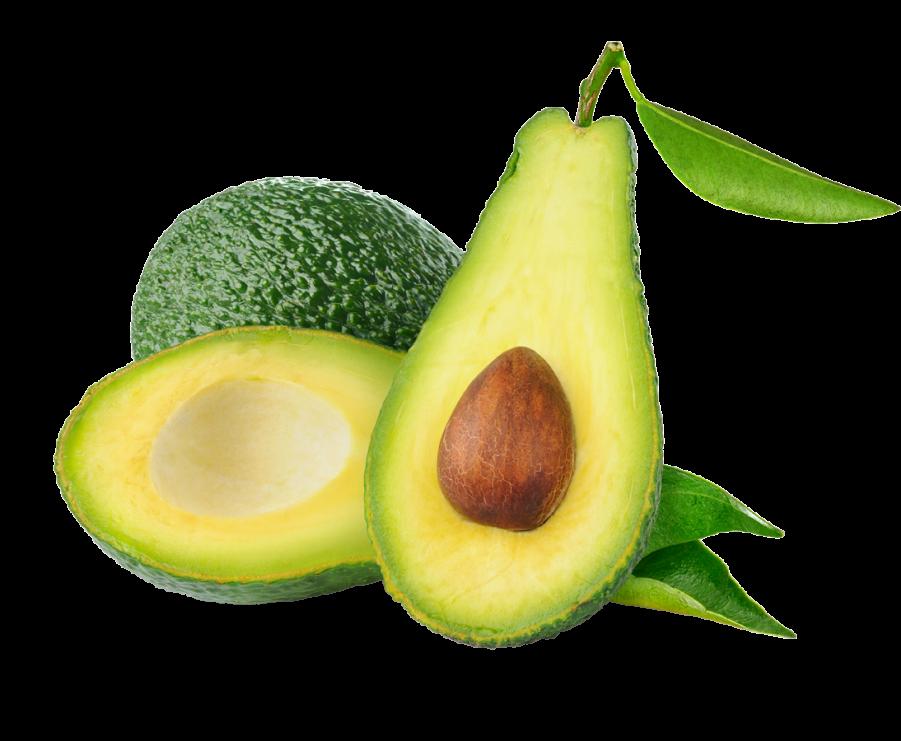 Avocado PNG Image