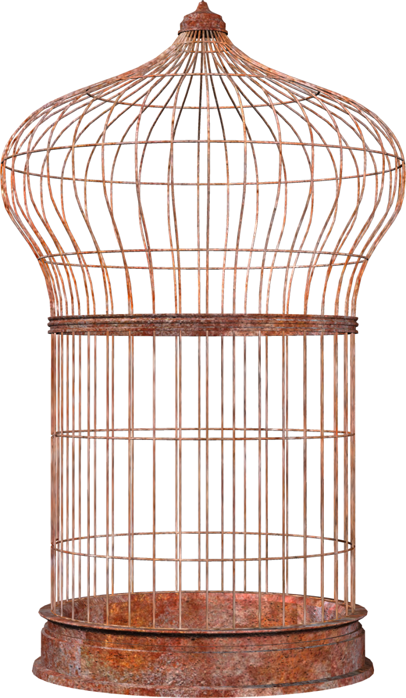 Bird Cage PNG Image