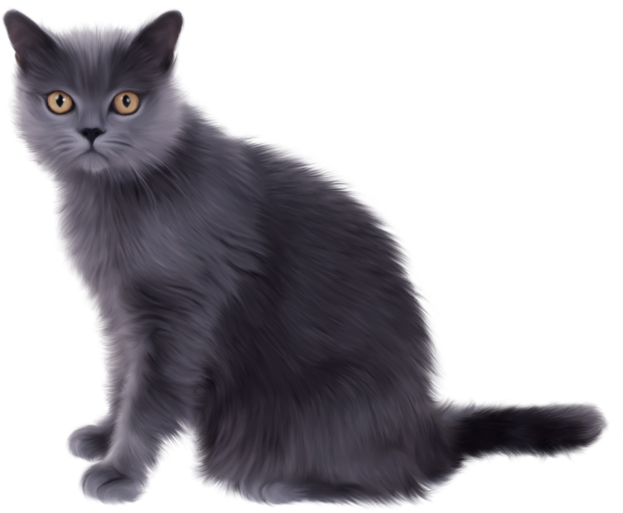 Black Sitting Cat PNG Image