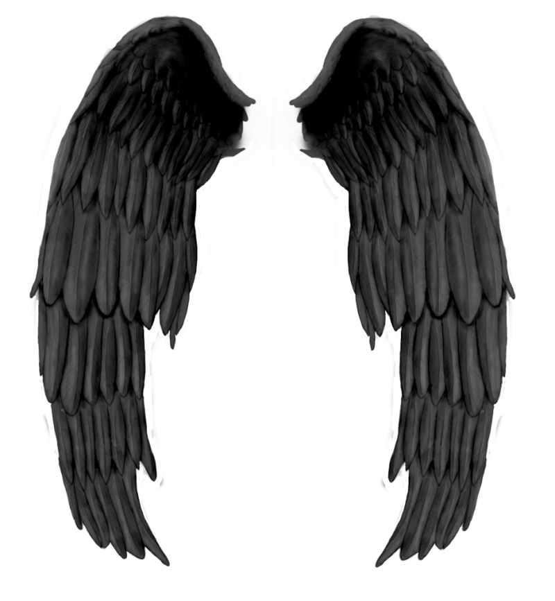 Black Wings PNG Image