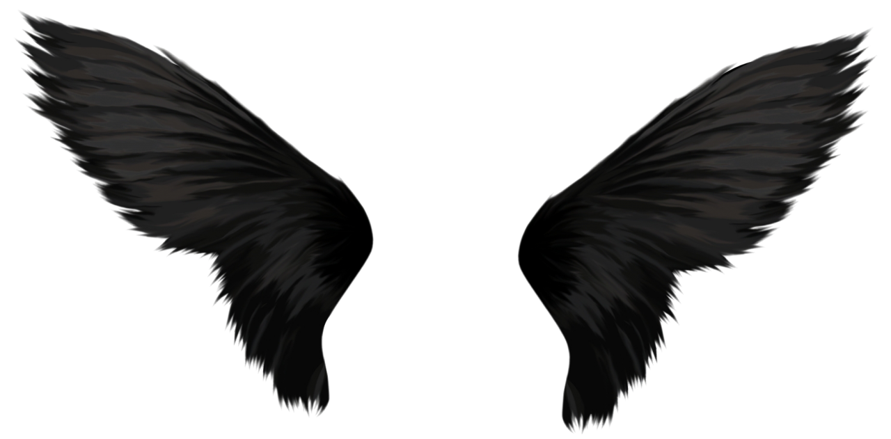 Black Wings PNG Image