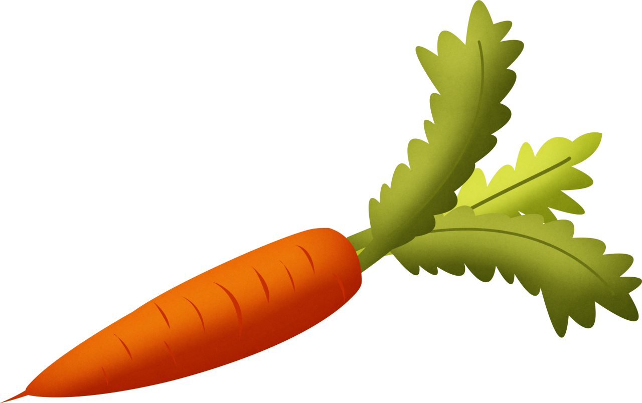 Carrot PNG Image