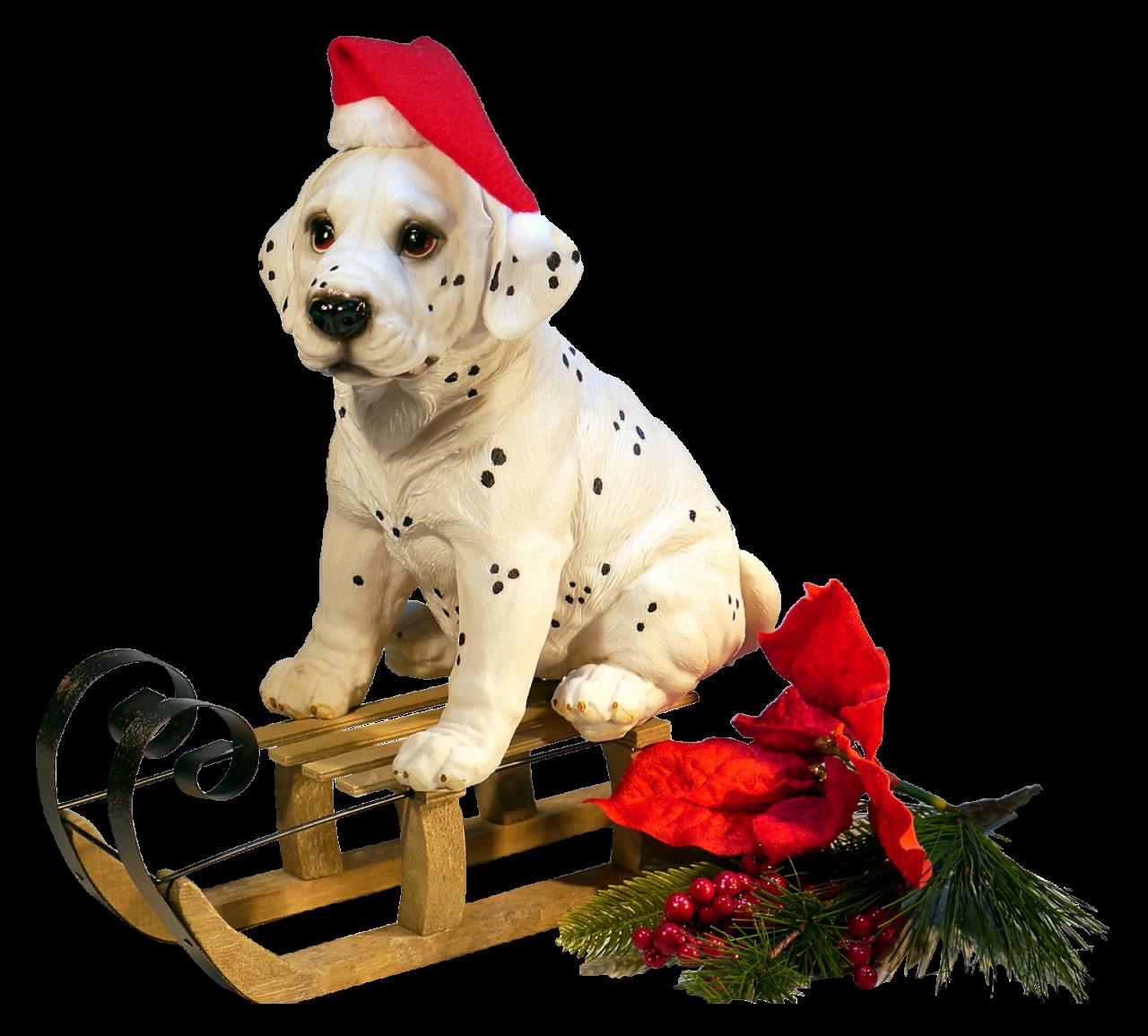 Christmas Dog PNG Image