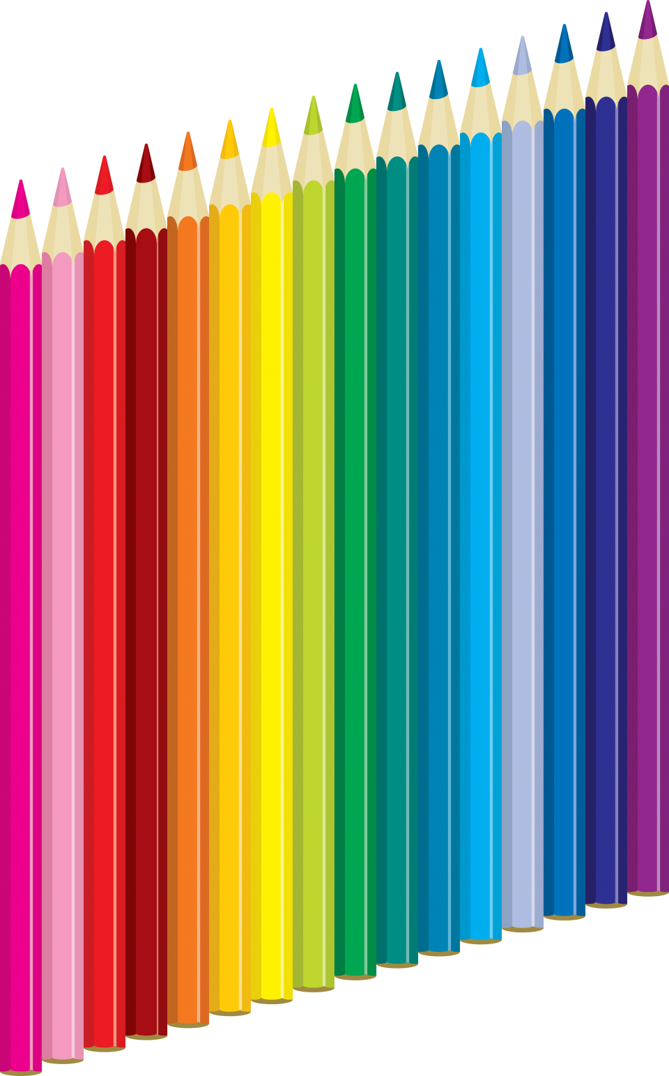 Color Pencil's PNG Image