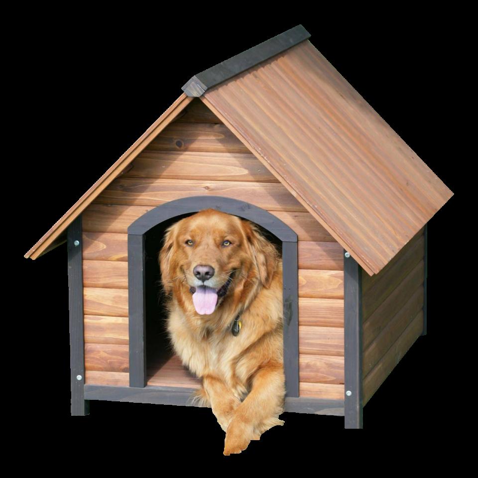 Dog House PNG Image