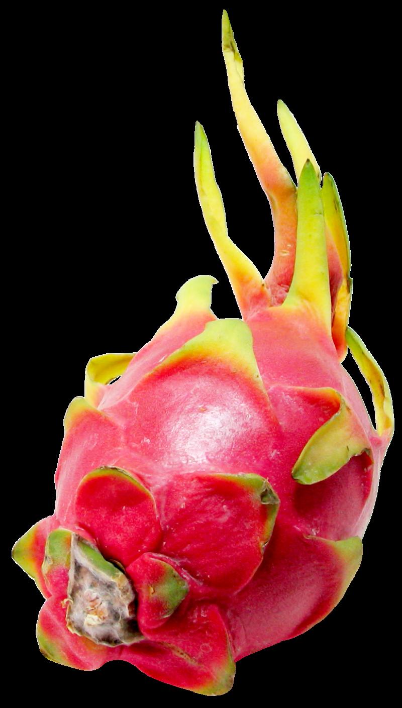 Dragon Fruit PNG Image - PurePNG   Free transparent CC0 ...