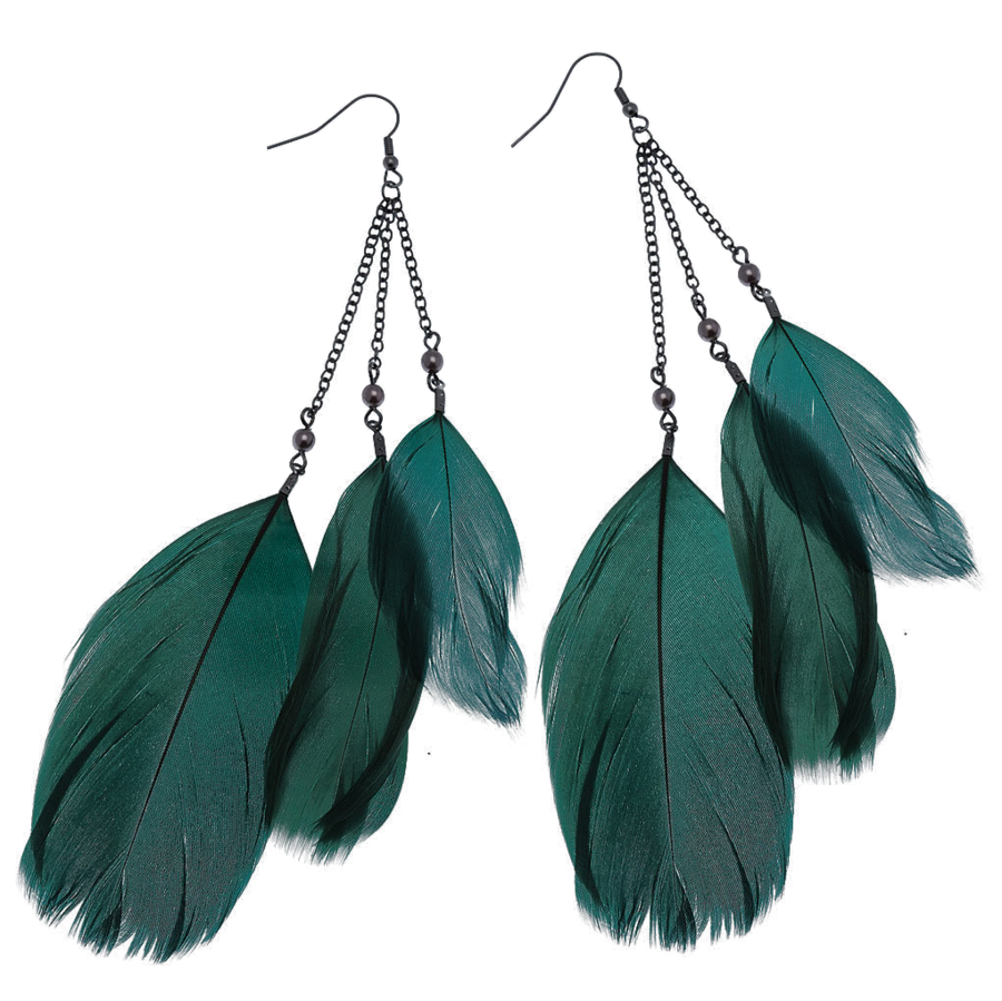 Feather Earrings PNG Image