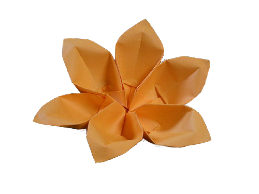 Flower Origami PNG Image