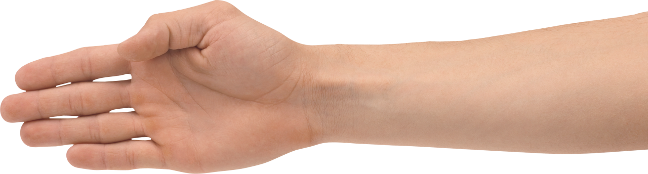 Hands PNG Image