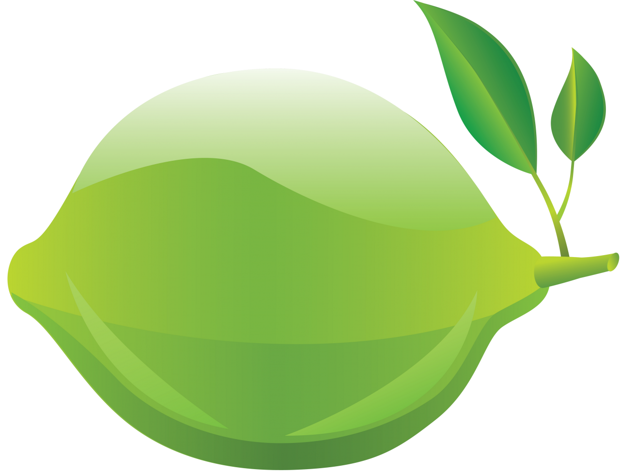 Lime PNG Image