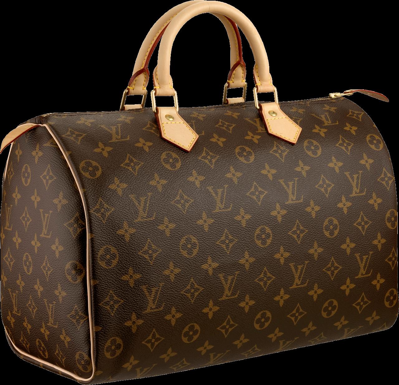 Louis Vuitton Women bag PNG Image