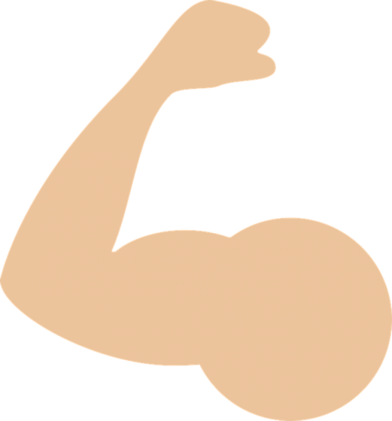 Muscle PNG Image