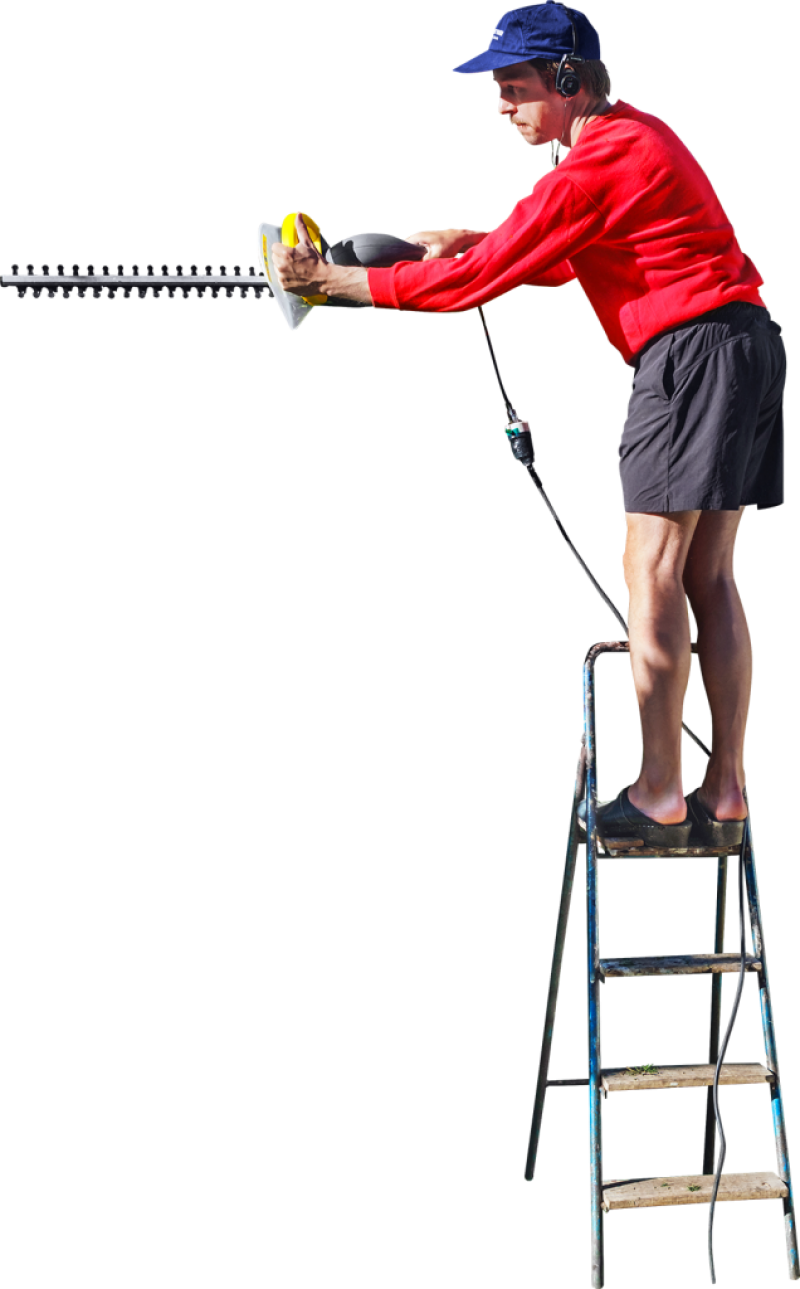 On A Ladder Cutting The Hedge PNG Image