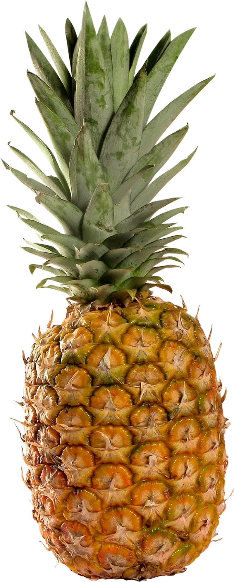 Pineapple PNG Image