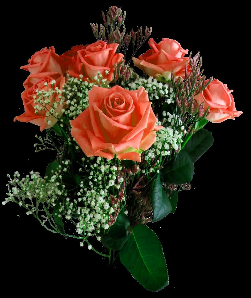 Rose Flower PNG Image
