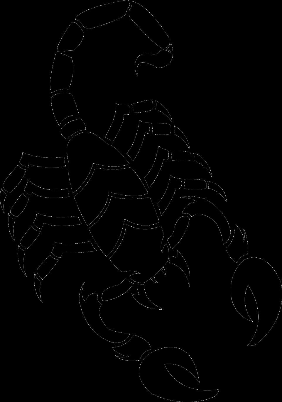 Scorpion PNG Image