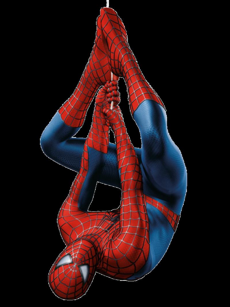 SpiderMan Hanging PNG Image - PurePNG | Free transparent ...