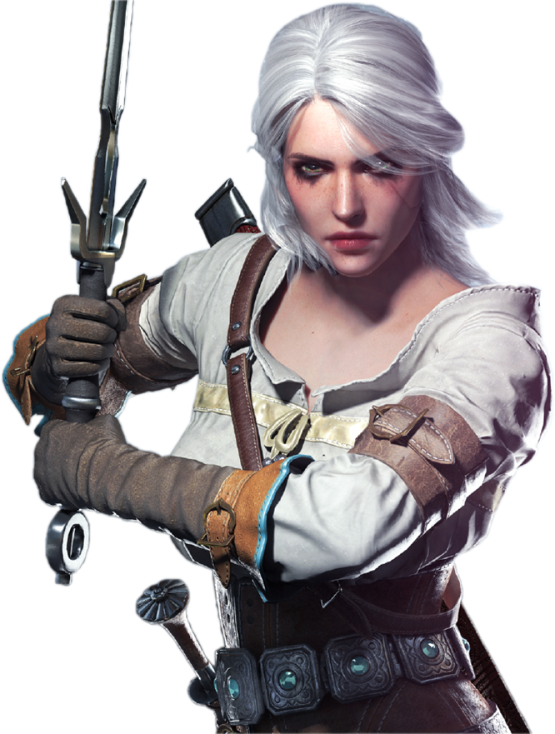 The Witcher  PNG Image