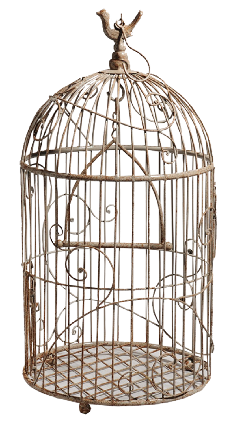 White Bird Cage PNG Image