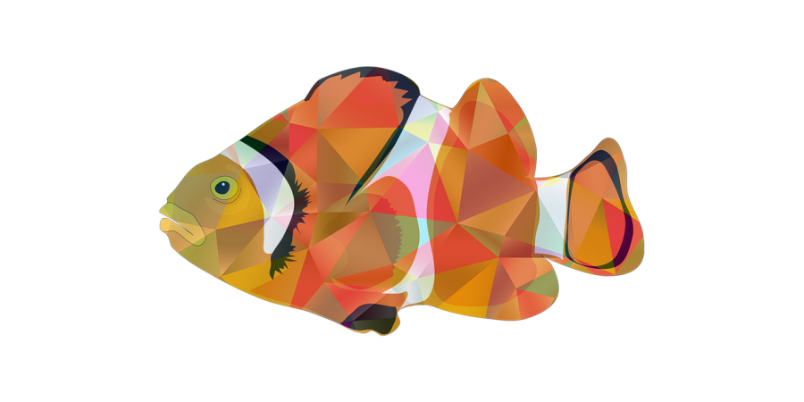 Red Fish Concept PNG Image