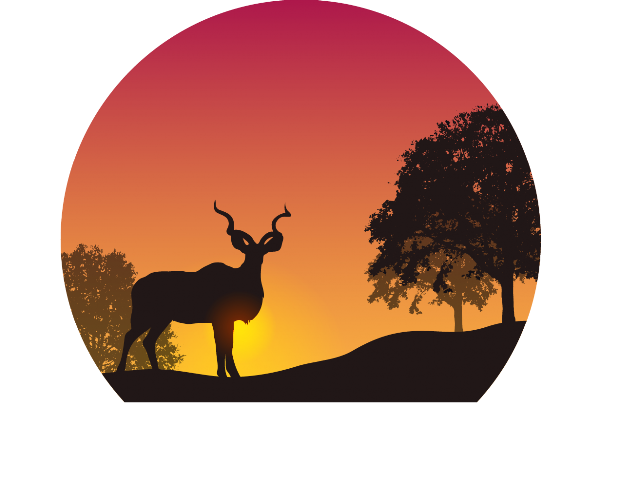 Sunset in the Wild PNG Image