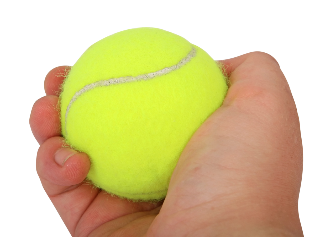 Tennis Ball in Hand PNG Image
