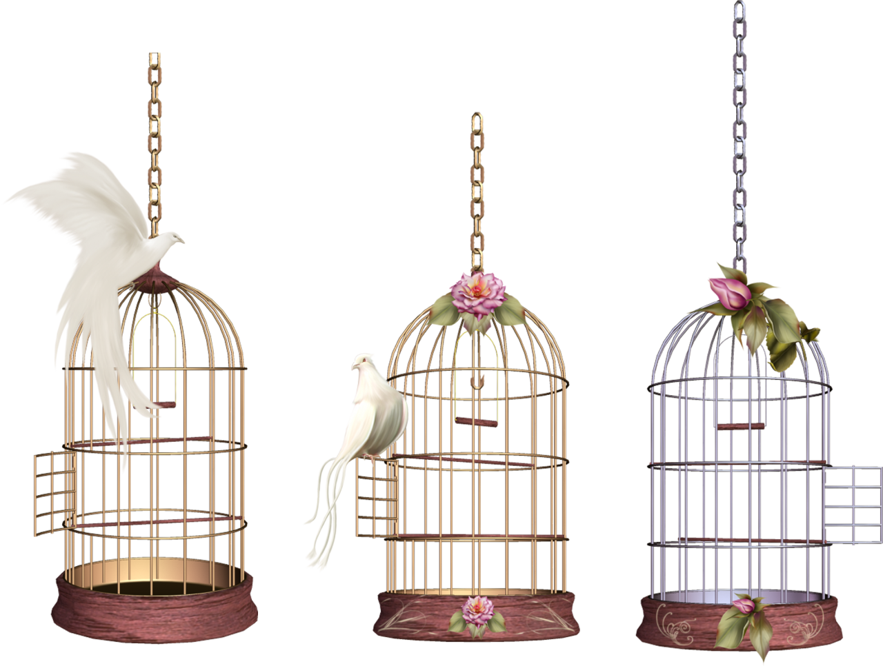 Three Cages PNG Image
