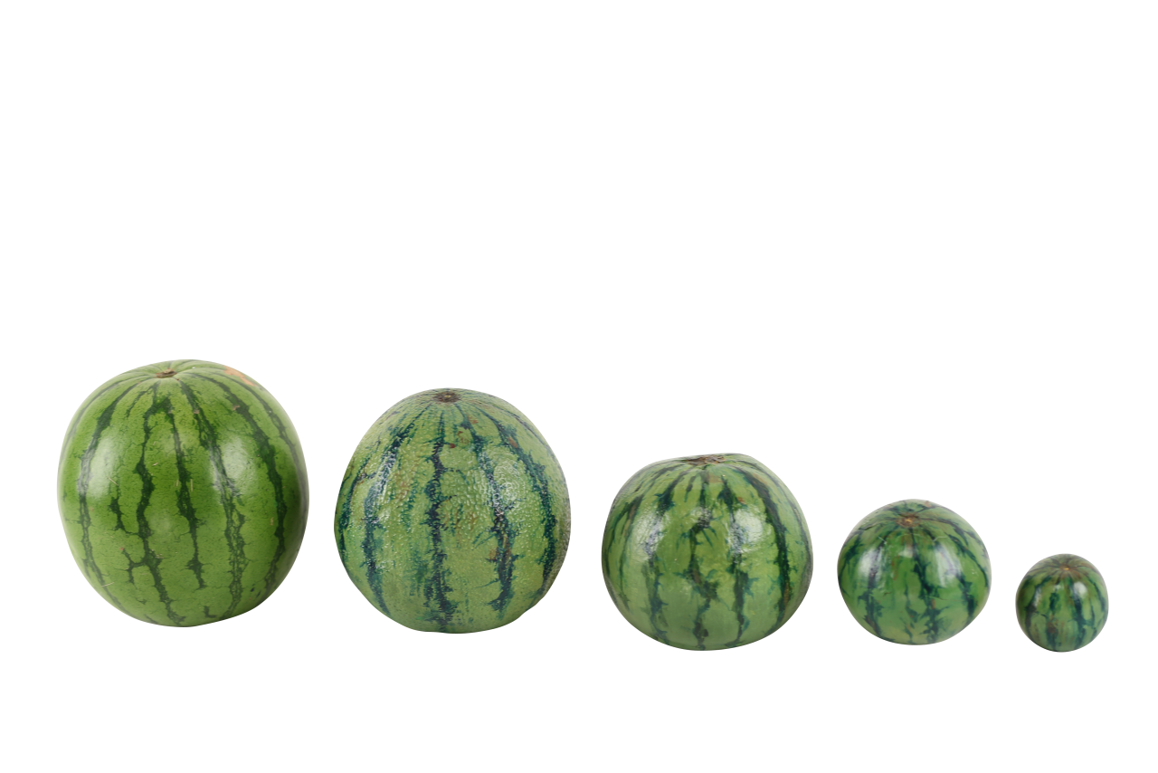 Watermelons PNG Image