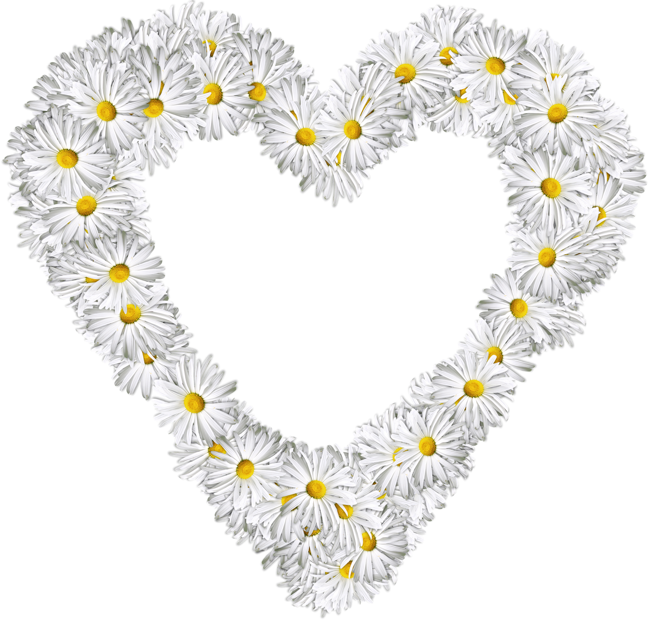 White Flowers Heart PNG Image